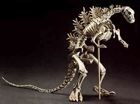 Shin Gojira? This Skeleton looks about right not exactly ...